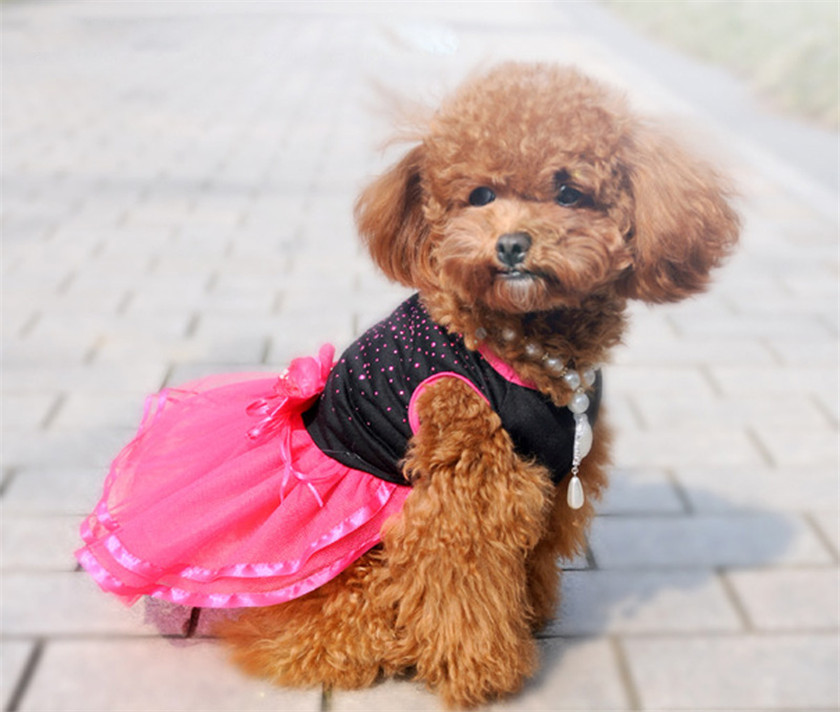 Practical 2018 NEW Fashion Hot Pet Dog Pupp Diamond Pet Dog Flower Dress Tutu Lace Skirt Princess Clothes Dress Wholesale