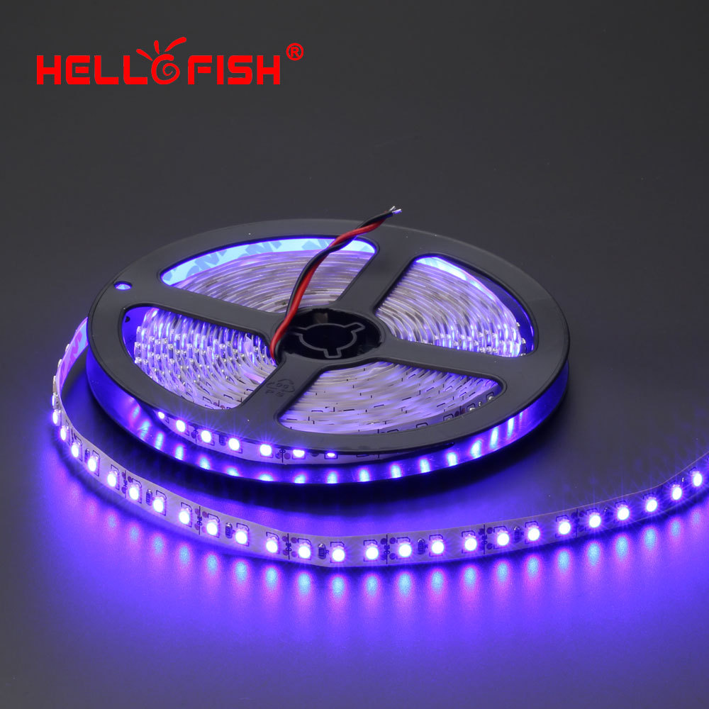 buy hello fish 5m high quality double pcb 600 led strip light 3528 smd 12v. Black Bedroom Furniture Sets. Home Design Ideas