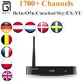 Arabic IPTV ZIDOO X8 Android TV Box with Royal IPTV Realtek RTD1295 +OpenWRT NAS dual OS Italy French Arabic Turkish UK IPTV Box
