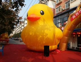 inflatable yellow duck 2 M high rubber duck is seated on lake, river,park, It is the landscape of the city