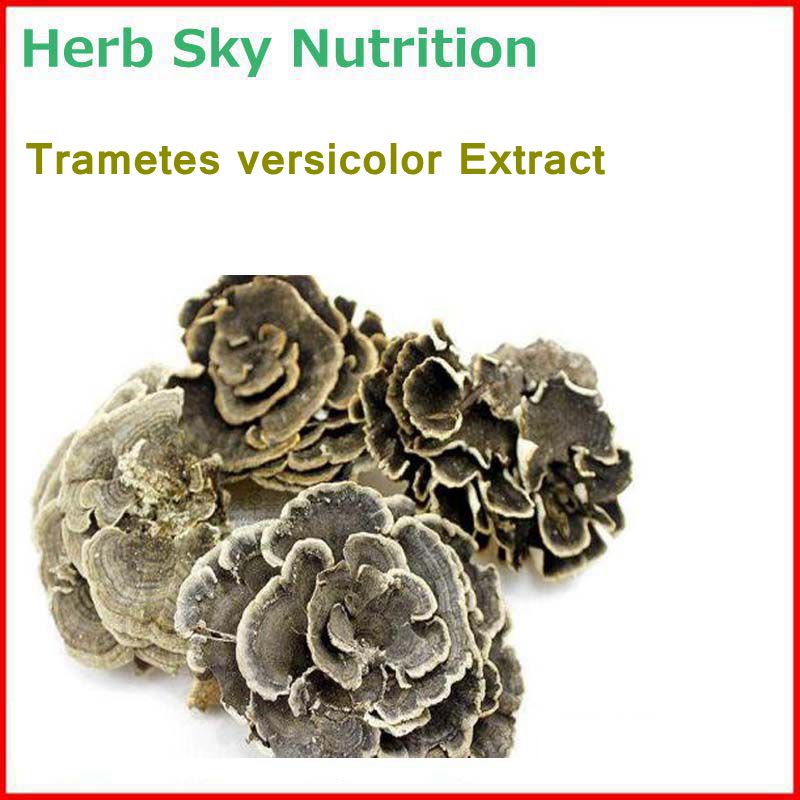 100% Natural& High quality Trametes versicolor/ rainbow conk  Extract with free shipping, immunity enhancement high quality guarana extract natural guarana extract powder