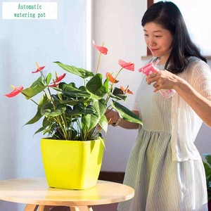 Image 3 - Creative Automatic Water Absorption flowerpot for Desktop Indoor Office decoration Large Plastic Lazy flower Pot Hydroponics