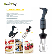 ITOP Commercial & Household Blender Plastic+Stainless Steel Handheld Egg Beater Whisk Mixer