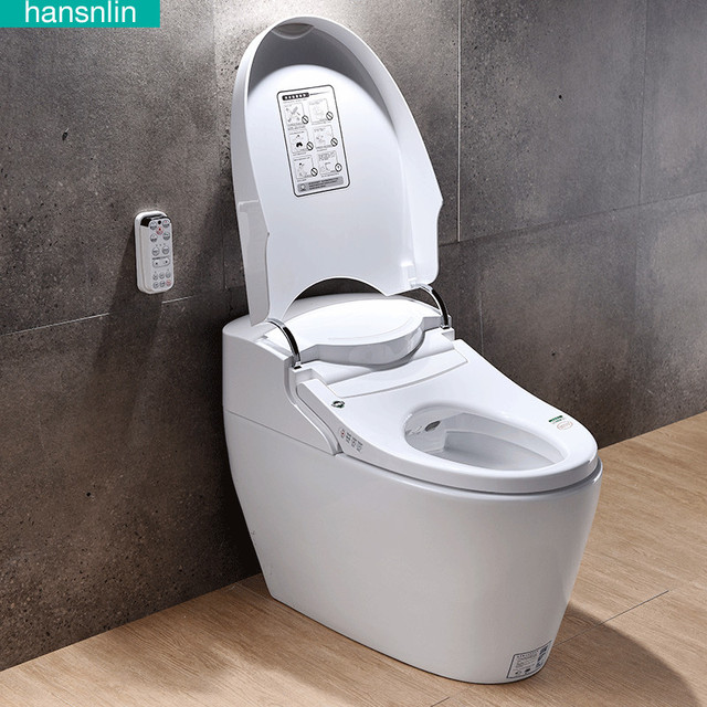 Eco Smart Toilet Commode Fully Integrated Bidet System