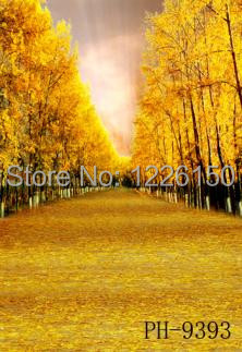 Free scenic sunshine Backdrop PH9393,10*10ft vinyl photography,photo studio wedding background backdrop,fondos fotografia free scenic spring photo backdrop 1883 5 10ft vinyl photography fondos fotografia photo studio wedding background backdrop