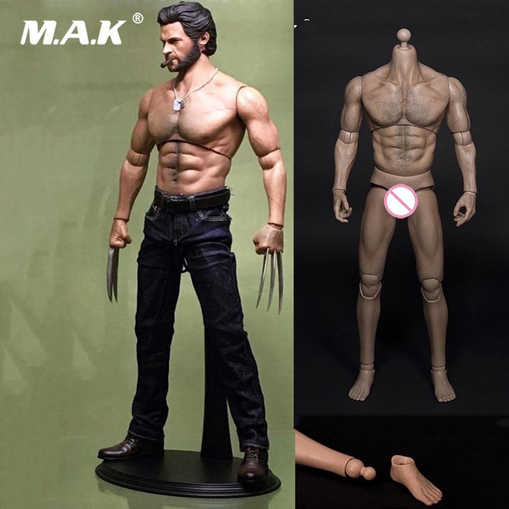 1:6 Scale Muscle Male Figure Body Wolverine Logan Male Figure Body Wide Shoulder 31CM fit 1/6 Man Head