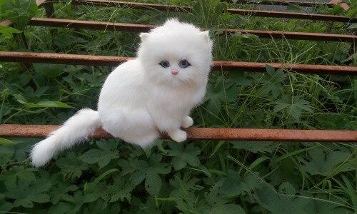 simulation white cat 18x16cm model toy lifelike sounds miaow cat model,handicraft ,home decoration gift t390