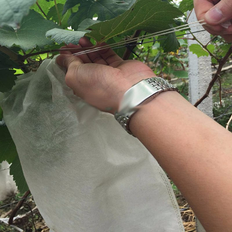 Image 5 - 100Pcs Grape Protection Bags For Fruit Vegetable Grapes Mesh Bag Against Insect Pouch Waterproof Pest Control Anti Bird Garden-in Grow Bags from Home & Garden