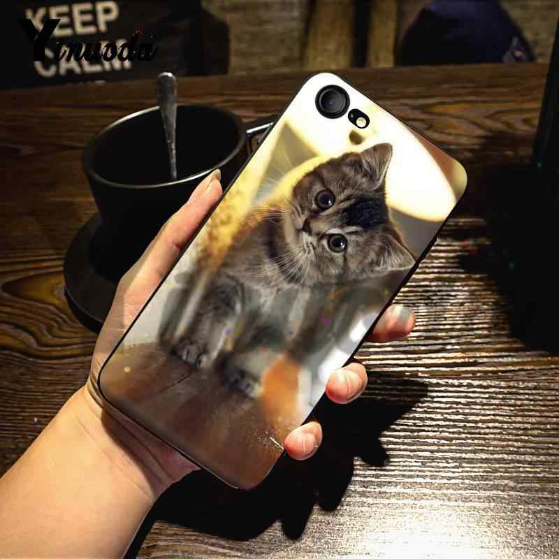 Yinuoda For Iphone 7 6 X Case Meow Beautiful Cute Cat Kitty Blanket Remarkable Phone Case For Iphone 7 X 6 6s 8 Plus 5 5s Xs Xr