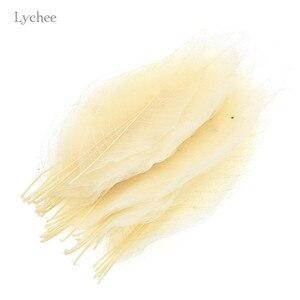 Image 2 - Lychee Life 50 sztuk Magnolia szkielet liść suszone liście Diy szycie, wesele materiały urodzinowe dekoracji wnętrz