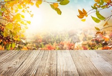 Laeacco Autumn Yellow Leaves Light Bokeh Wooden Floor Photography Backgrounds Customized Photographic Backdrops For Photo Studio