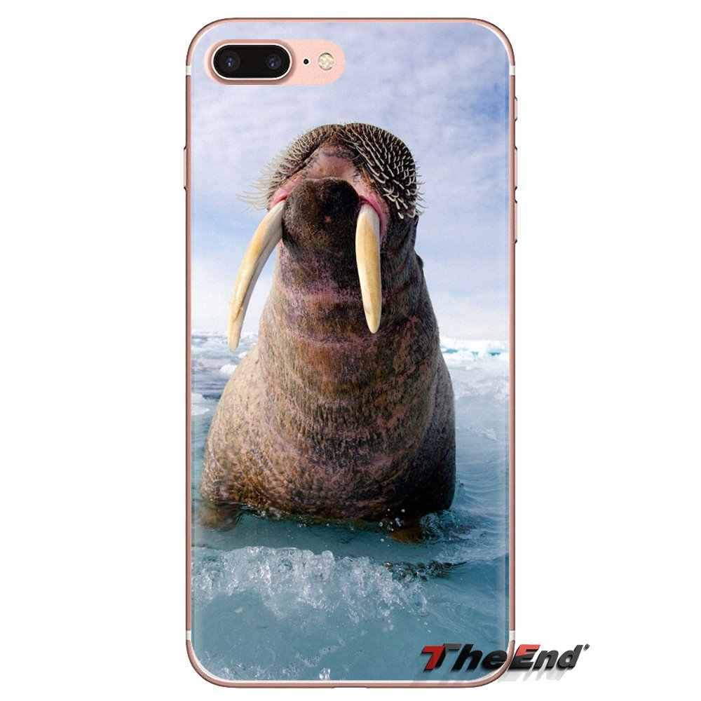 Untuk Samsung Galaxy S3 S4 S5 Mini S6 S7 Edge S8 S9 S10 Plus Catatan 3 4 5 8 9 lembut TPU Cover Walrus Odobenus Rosmarus Bahasa Rusia Arctic