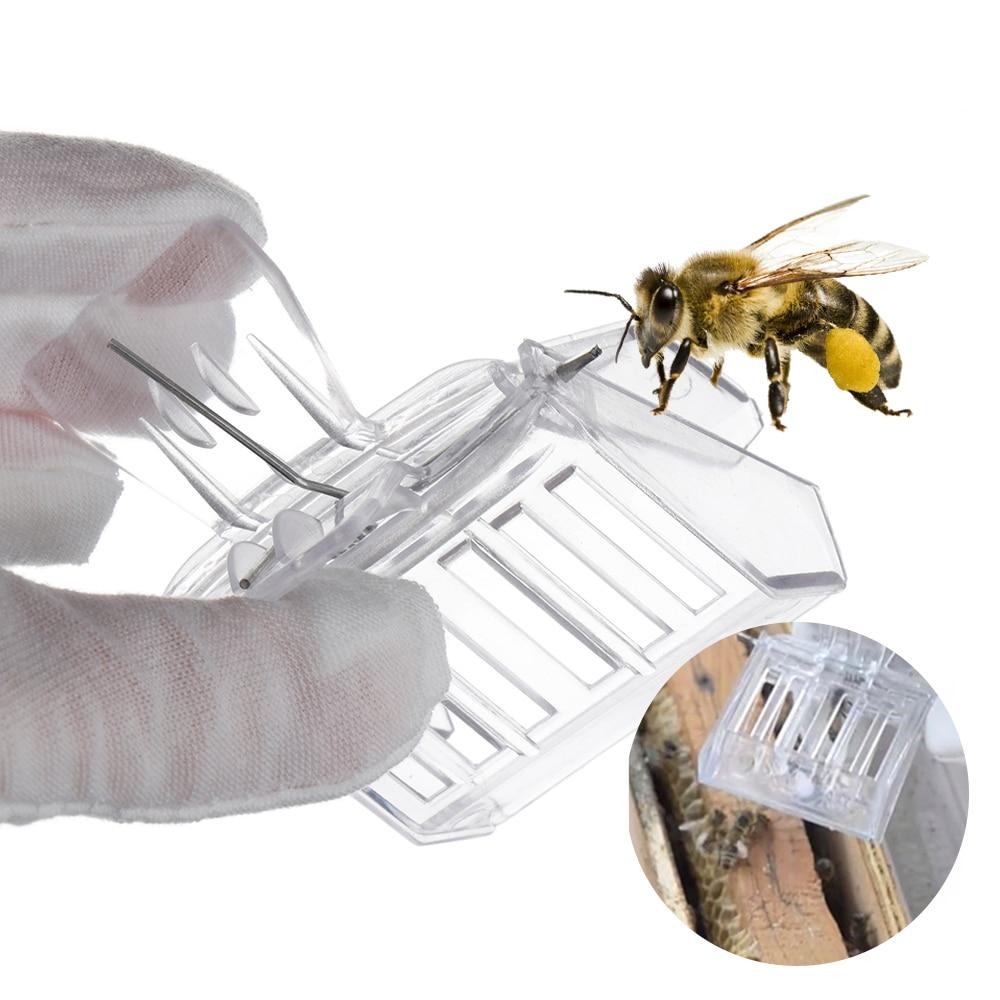 Beekeeper Equip Room Insect Catcher No-hurt Beekeeping Clip Queen Bee Cage