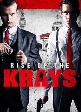 《双生杀手的崛起》2015年英国犯罪电影在线观看