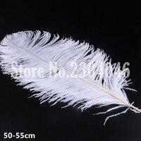 10 de alta qualidade bonita 50 a 55 cm (20-22 polegadas) avestruz pena moda branqueamento tintura de cabelo roupas brancas