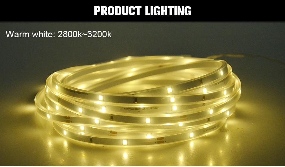 RGB LED Solar strip light (7)