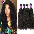 8A Unprocessed Peruvian Virgin Hair Kinky Curly Virgin Hair 4 Bundles Deals Curly Weave Human Hair Cheap Afro Kinky Curly Hair