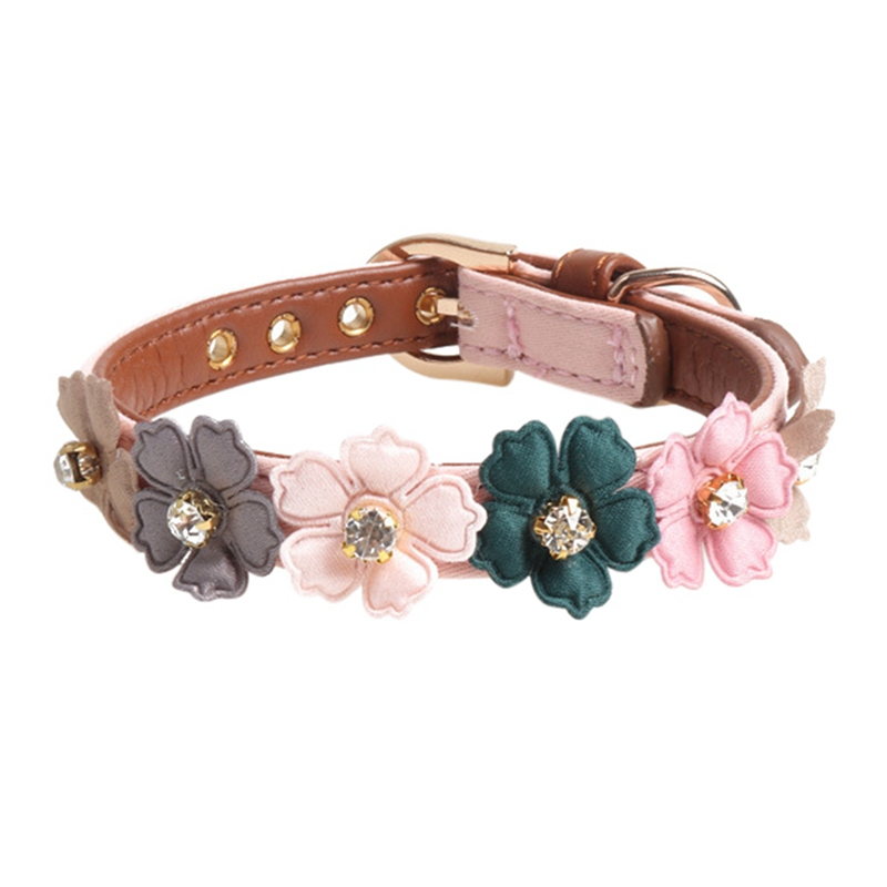cute dog collars for females