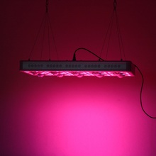 лучшая цена For indoor 900W LED plant growth spectrum full spectrum COB chip growth flower button control adjustable mode hydroponic lamp