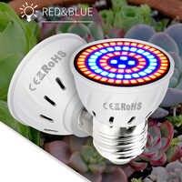 LED E27 pełnozakresowe LED żarówka dla wzrostu roślin lampa E14 kryty sadzonka GU10 220 V rosną światła MR16 hydroponika cieplarnianych