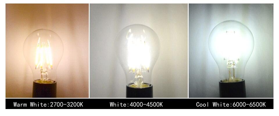 Dimmable Antique Retro Edison Incandescent LED lamp 110V E27 2W 4W 6W (9)