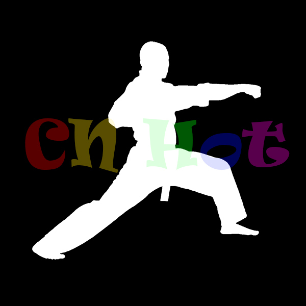 Hot Sale Karate Punch Chinese Kung Fu Sticker for Car Window Decal Fight Kick Neat Gift Vinyl Black Belt Win