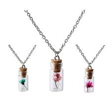 New Top Fashion Jewelry Silver Chain Lovely Girl Flowers & Plants Wishing Bottle Necklaces & Pendants For Women NR2230