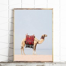 Desert Animal Camel Canvas Art Print and Poster , Camel Boho Nursery Wall Art Painting Picture Moroccan Dubai Modern Home Decor(China)