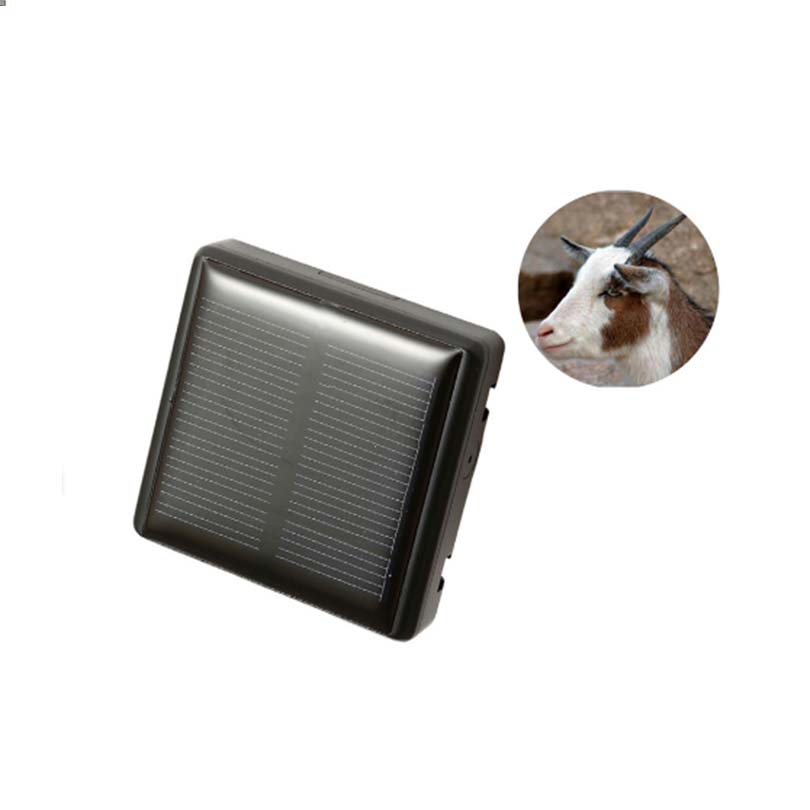 Waterproof IP66 mini solar sheep cow Cattle animal long standby time gps tracker lifetime free use