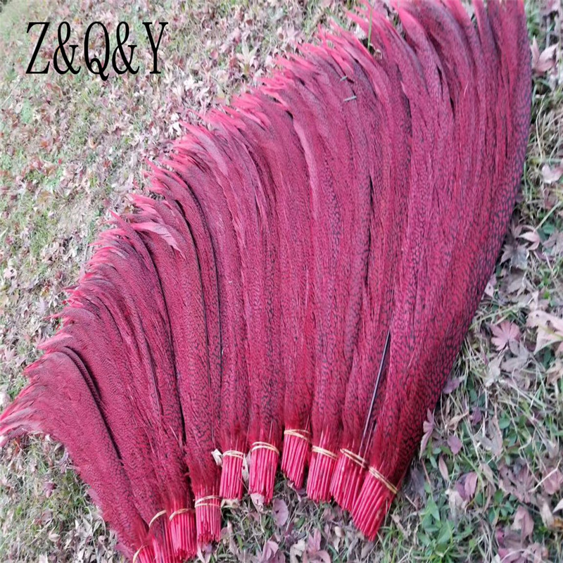 Z & Q & Y Natural 50 Gentiana Tail 70-80CM (28-32 inches) Feather Dye DIY Feather Decoration Make-up Festival PartyZ & Q & Y Natural 50 Gentiana Tail 70-80CM (28-32 inches) Feather Dye DIY Feather Decoration Make-up Festival Party