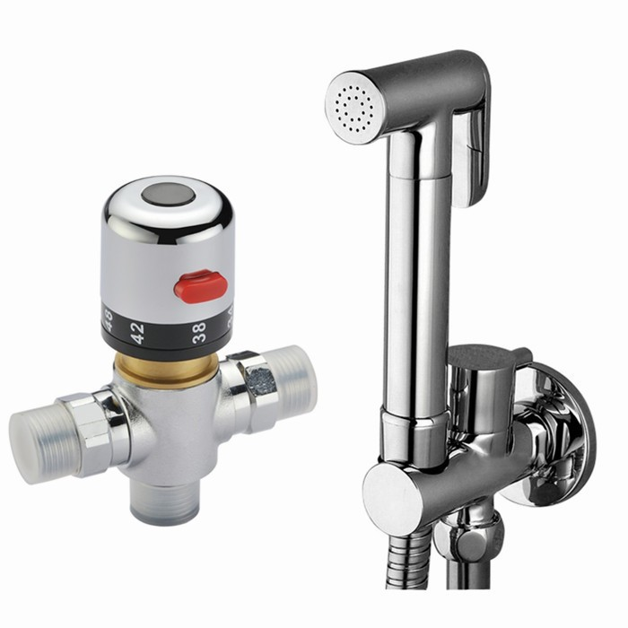 Free shipping brand new brass bidet thermostatic valve faucet, hand held bidet shower, toilet faucet BD288-1 free shipping brand new brass bidet