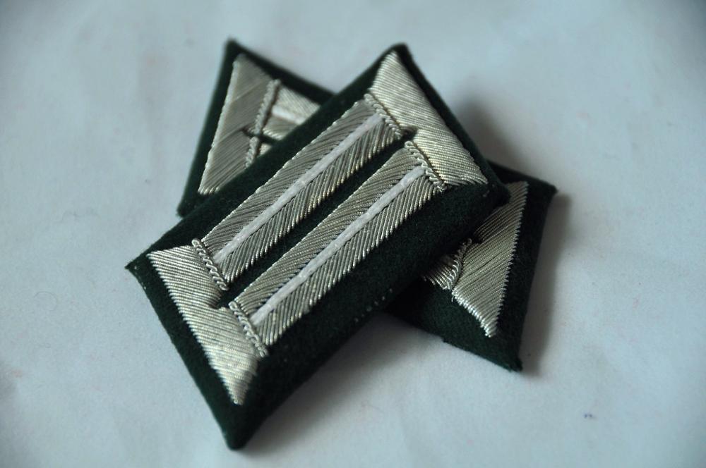EMD WW2 Collar Badge,Officer