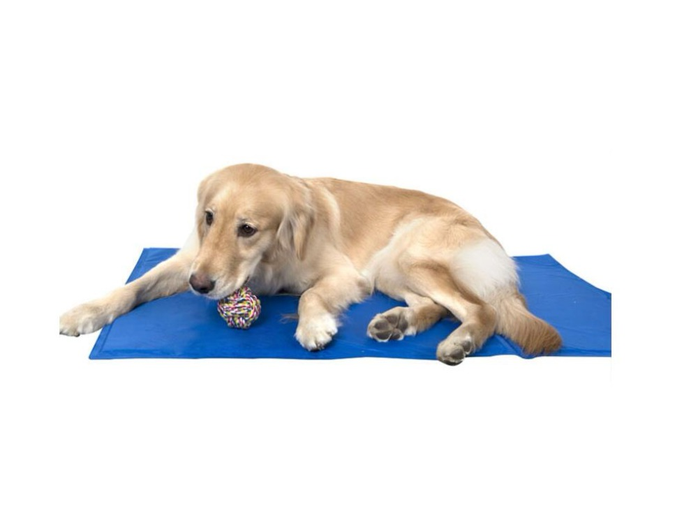 Cooling Mat Ice Pad Mattress Medium Large Cat Cushion Keep Cool Bed Gel Pet Cooling Mat for Dogs Cats XL XXL in Hot Summer