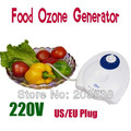220V 110V Food Water Air Ozone Generator Ozonizer Sterilizer Fruit Air Sterilizer Removes Harmful Gases Skin Care