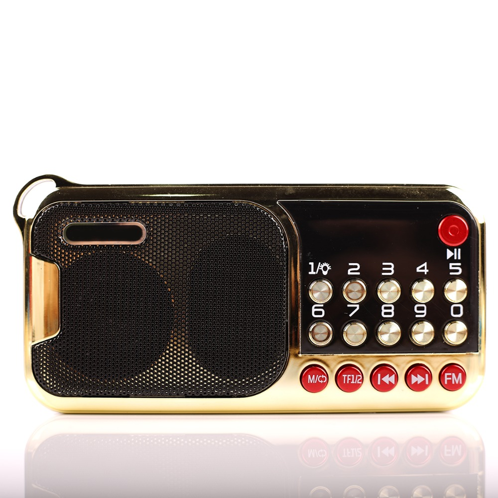 C-851 Portable Mini FM Radio Speaker Music Player TF Card USB For PC iPod Phone with LED Display outdoor Dancing mp3 HiFi