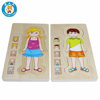 Wooden Montessori Material Baby Children Multi layer Puzzles Educational Toys Body of Man And Women Human Structure