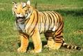 Огромный Плюшевый тигр игрушки высокого искусственный моделирование тигр куклы большой тигр около 110 х 72 см