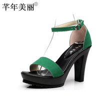 Women's High Heel Platform Sandals Shoes Simple Ankle Sandals Extral Small Size 33-43 Plus Size WSA004