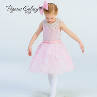 Pink Spandex Leotard Dress Girls Ballet Dance Suit Lady Ballet Tutu Lace Dress Jazz Dance Costume Flower Girl Dress B 6315