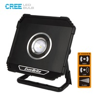 EverBrite 800 Lumens LED Floodlight Rechargable Portable Spotlights Waterproof Outdoor Lighting for Camping Emergency