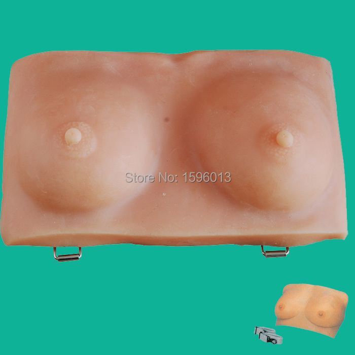Breast Examination Model, Breast Self examination Model iso vivid examination and diagnostic breast trainer breast self examination model
