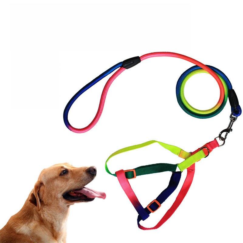Nylon dog leash leash harness dog training dog walking leash middle and large dog S / M / L Rainbow Color