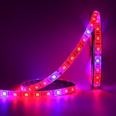 5 mt/rolle LED Phyto Lampen DC12V Wasserdichte Volle Geführte spektrum Streifen Licht 5050 Chip LED Wachsen Licht Für gewächshaus wasserkulturanlage