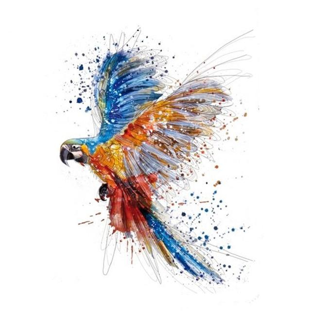 Macaw Bird Cost  Bruin Blog
