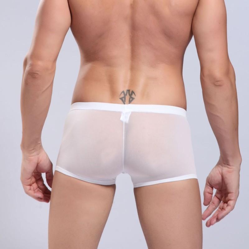 дешевые шелк льда нижнее белье сексуальное большой боксер мужские боксеры вискоза бренды высокое качество магистральных сексуальные трусики
