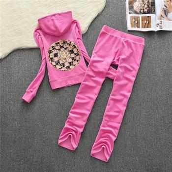2019 Women's Yoga Set  Fitness Clothing Women Sweatshirt Pants Sets Velvet Tracksuit Women Velour smooth soft Suit