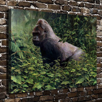 A0523 An Orangutan In The Jungle Animal HD Canvas Print Home Decoration Living Room Bedroom Wall
