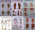 Frete grátis 10 pcs Demolição de saúde acupuntura humano parede gráfico diagrama pé mão cabeça gráfico meridiano de acupuntura da orelha