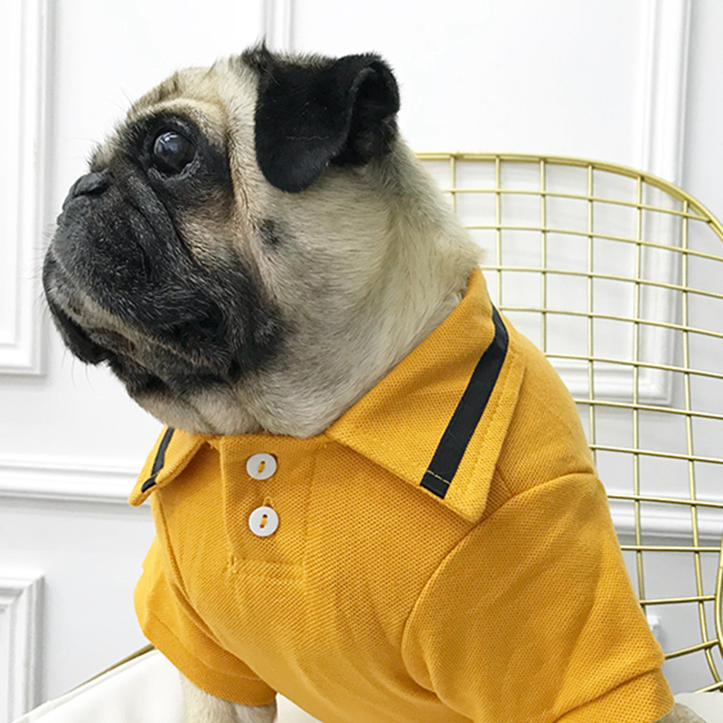 [MPK Store] Dog Polo Shirt, Summer Dog Clothes, Casual Wear for Dogs / Pug /