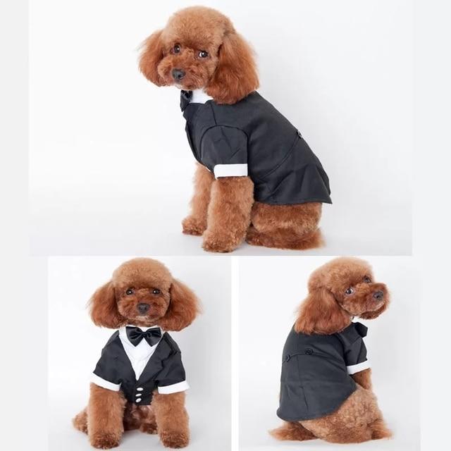 Bigeyedog Boy Dog Suit Wedding Costume Male Dog Clothes Pug French Bulldog Clothes Tuxedo Pet Clothing & Bigeyedog Boy Dog Suit Wedding Costume Male Dog Clothes Pug French ...